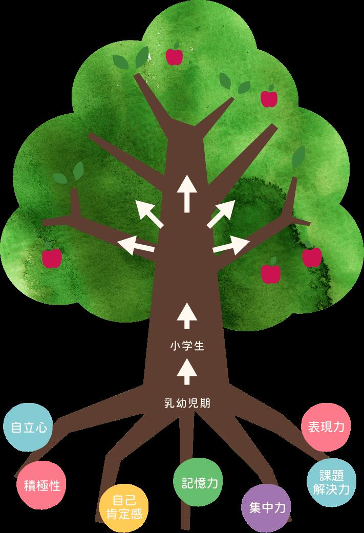 アカデミアキッズの教育。系統樹